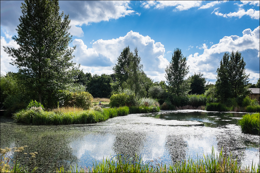 London Wetland Centre Wedding Photography 112